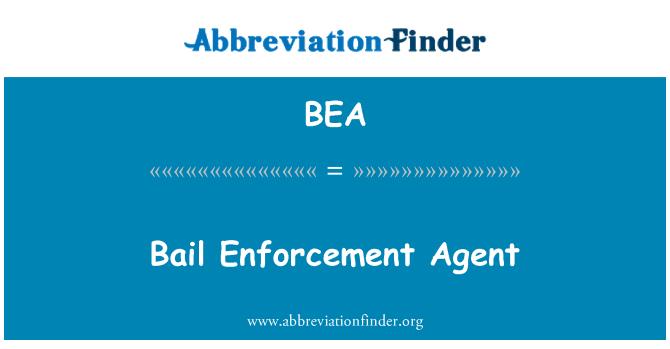 BEA: Bail Enforcement Agent