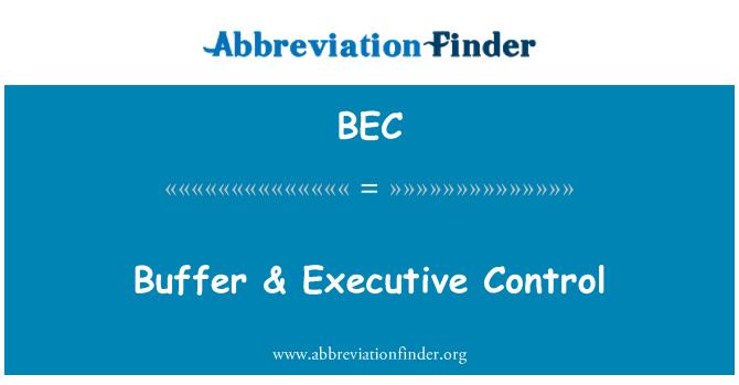 BEC: Buffer & Executive Control
