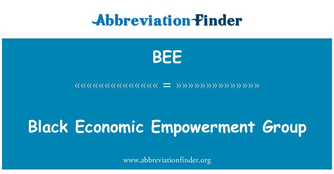 BEE: Must majandusliku mõjuvõimu nimel