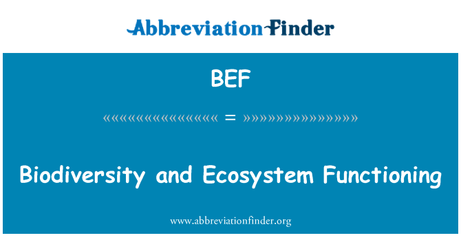 BEF: Biodiversity and Ecosystem Functioning