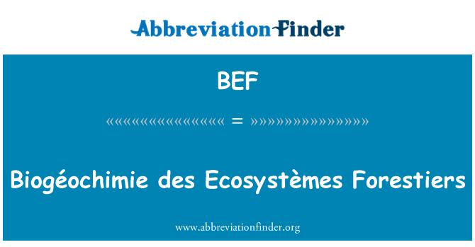BEF: Biogéochimie des Ecosystèmes Forestiers