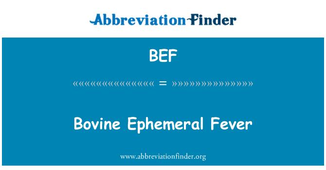 BEF: Bovine Ephemeral Fever
