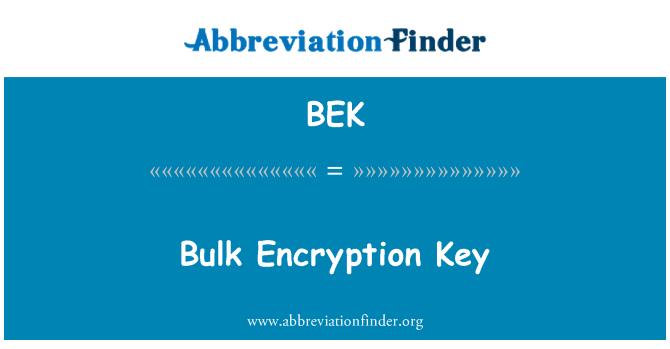 BEK: Bulk Encryption Key