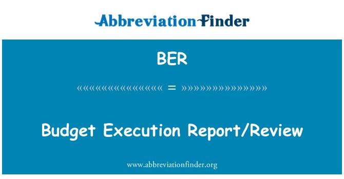 BER: Budget Execution Report/Review