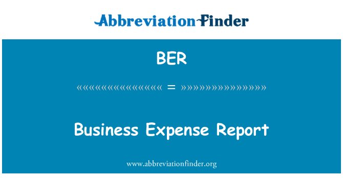 BER: Business Expense Report