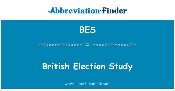 BES: British Election Study