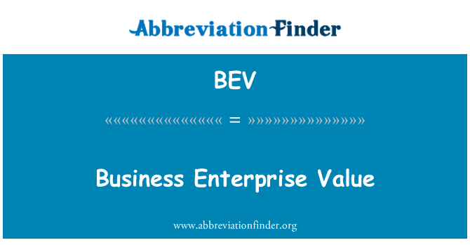 BEV: Business Enterprise Value