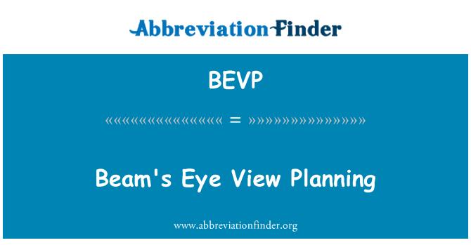 BEVP: Beam's Eye View Planning