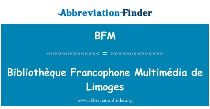 BFM: Bibliothèque Francophone Multimédia de Limoges