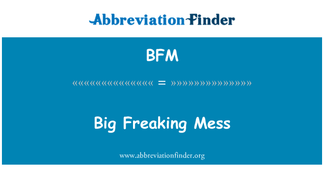 BFM: Big Freaking Mess