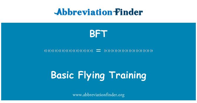 BFT: Basic Flying Training