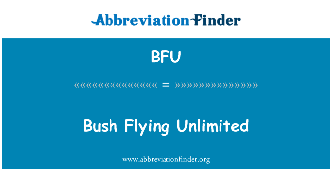 BFU: Bush Flying Unlimited