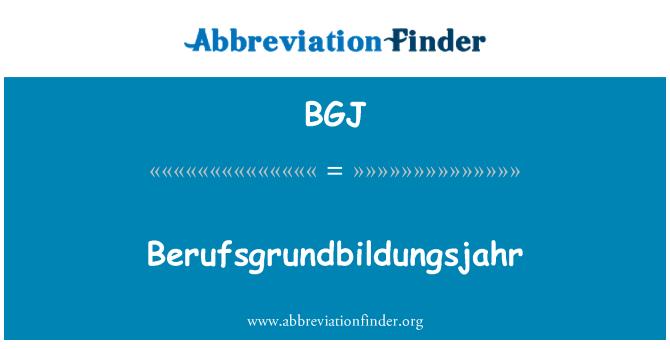 BGJ: Berufsgrundbildungsjahr