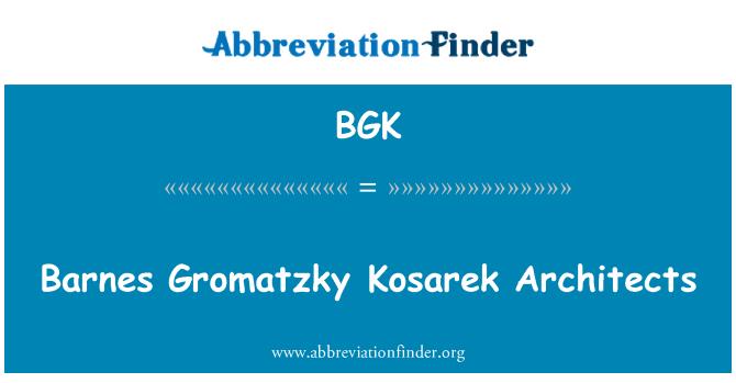 BGK: Barnes Gromatzky Kosarek Architects