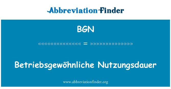 BGN: Betriebsgewöhnliche Nutzungsdauer