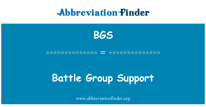 BGS: Battle Group Support