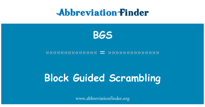 BGS: Block Guided Scrambling