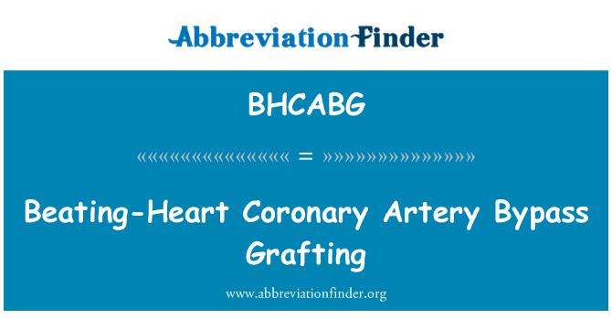BHCABG: Beating-Heart Coronary Artery Bypass Grafting