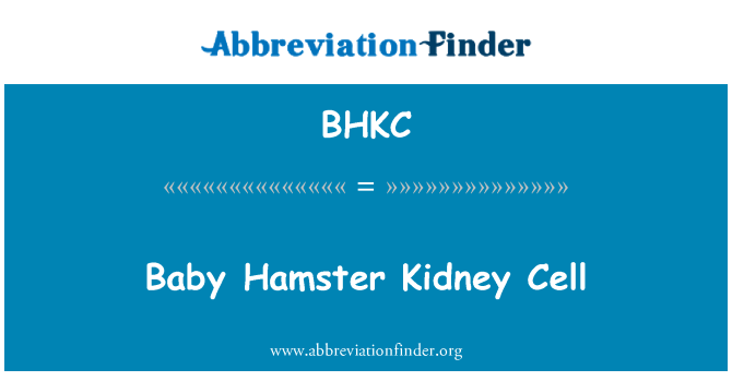 BHKC: Baby Hamster Kidney Cell