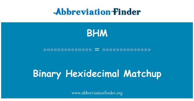 BHM: Binary Hexidecimal Matchup