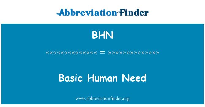BHN: Basic Human Need