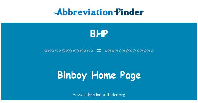 BHP: Binboy Home Page