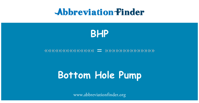 BHP: Bottom Hole Pump