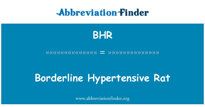 BHR: Borderline Hypertensive Rat