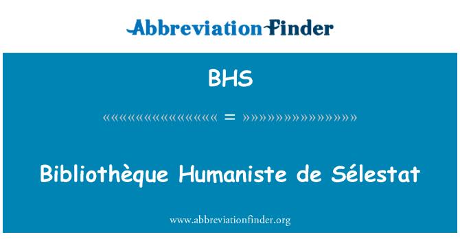 BHS: Bibliothèque Humaniste de Sélestat