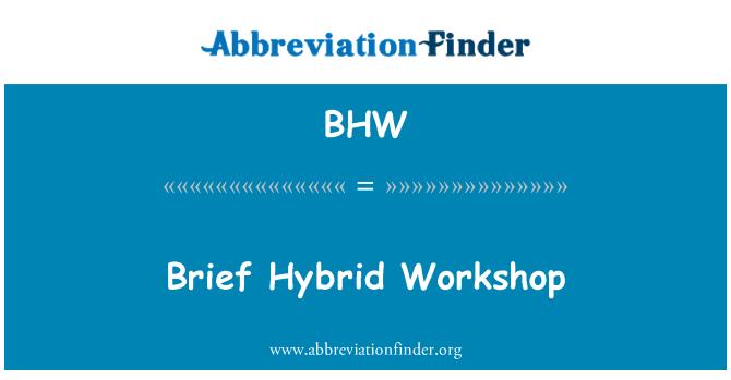 BHW: Brief Hybrid Workshop