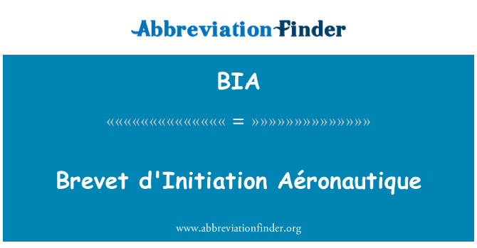 BIA: Brevet d'Initiation Aéronautique