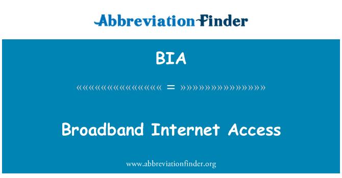 BIA: Broadband Internet Access