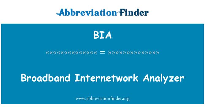 BIA: Broadband Internetwork Analyzer
