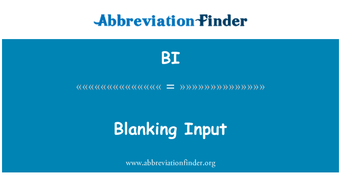 BI: Blanking Input