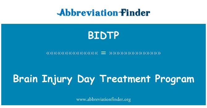 BIDTP: Programa de tratamiento de día de lesión de cerebro