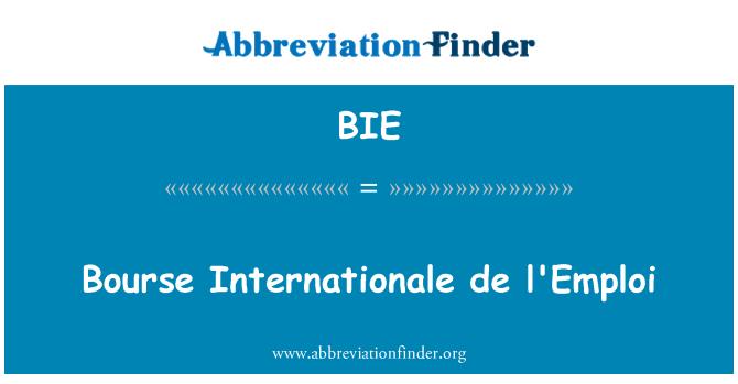 BIE: Bourse Internationale de l'Emploi