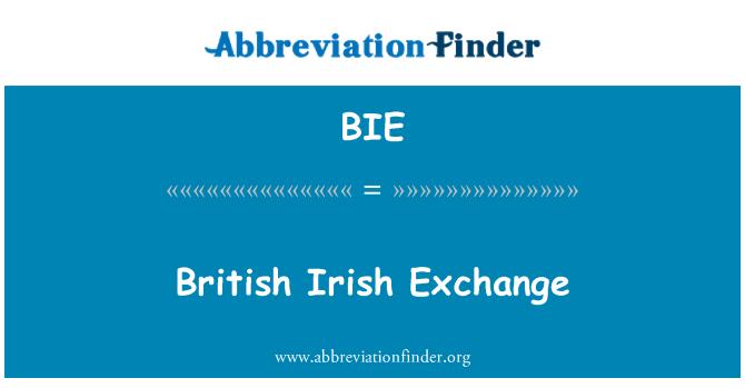 BIE: British Irish Exchange