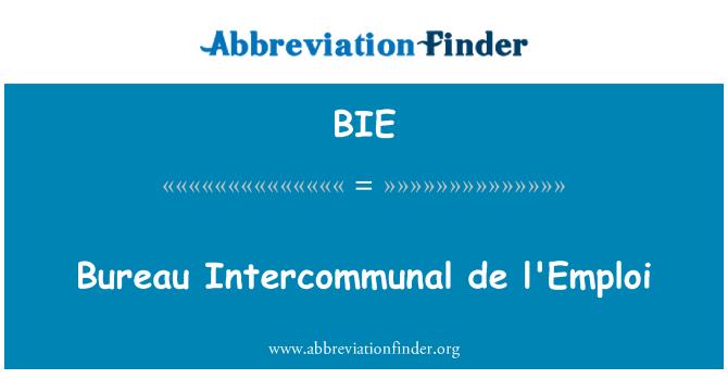 BIE: Bureau Intercommunal de l'Emploi