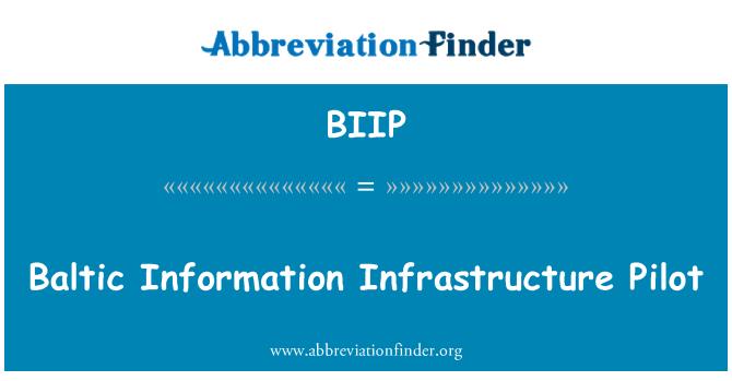 BIIP: Baltic Information Infrastructure Pilot