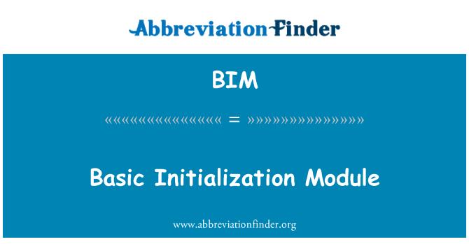 BIM: Basic Initialization Module