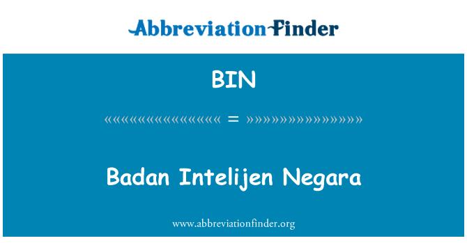 BIN: Badan Intelijen Negara