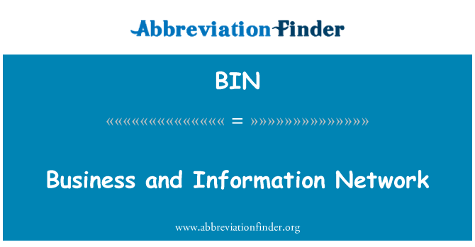 BIN: Business and Information Network
