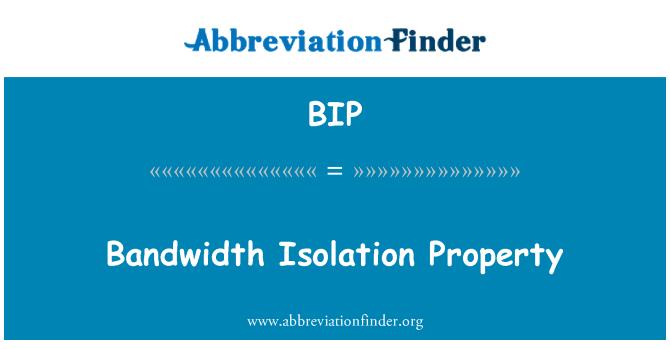 BIP: Bandwidth Isolation Property