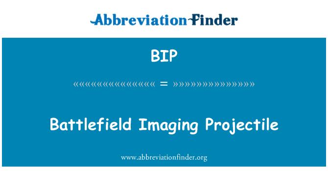 BIP: Battlefield Imaging Projectile