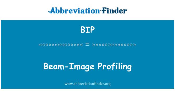 BIP: Beam-Image Profiling