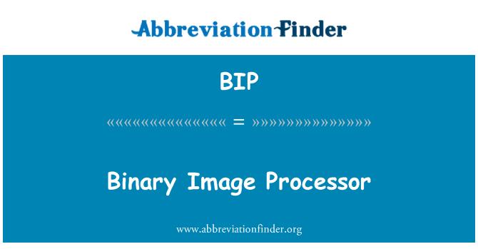 BIP: Binary Image Processor