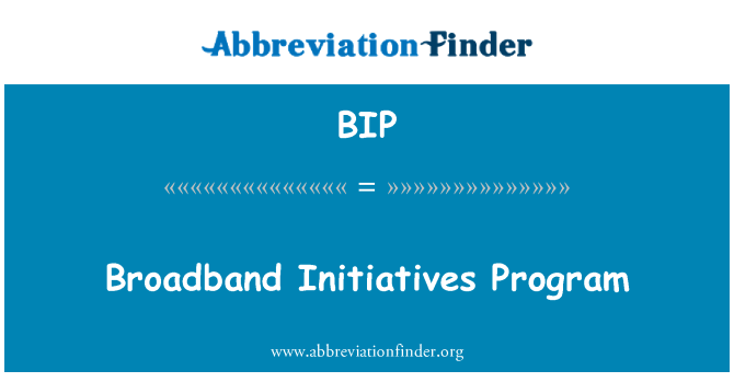 BIP: Broadband Initiatives Program