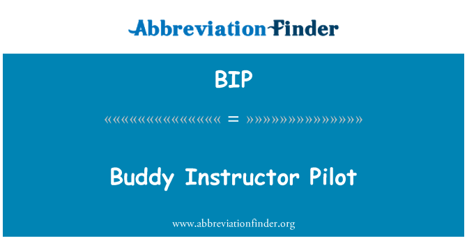 BIP: Buddy Instructor Pilot