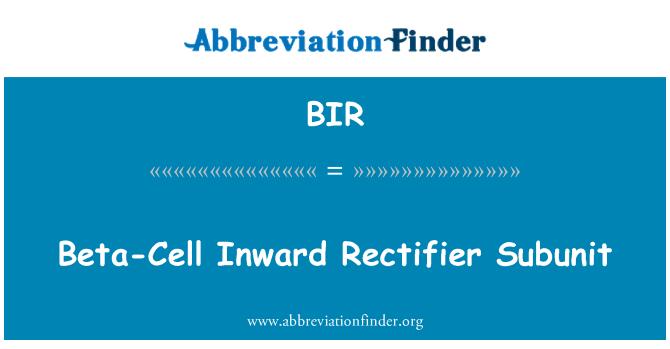 BIR: Beta-Cell Inward Rectifier Subunit