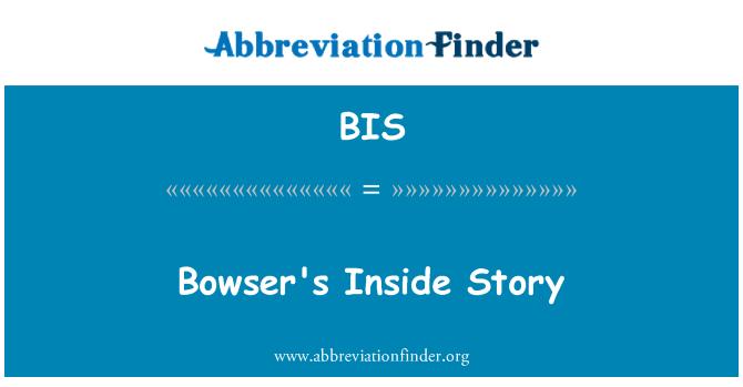 BIS: Bowser's Inside Story